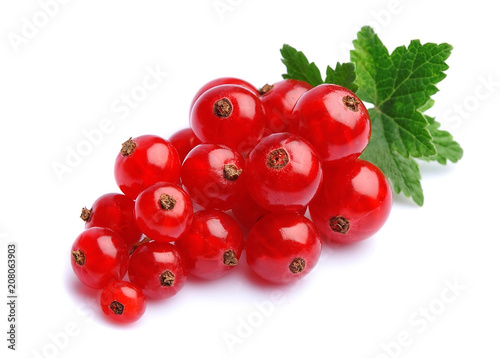Canvas Print Red currants berry.