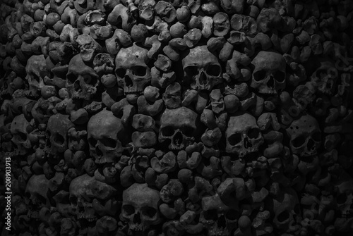 Fototapeta Collection of skulls and bones covered with spider web and dust in the catacombs