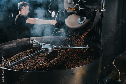 Slika na platnu Professional male roaster loading container of steaming machine with coffee bean