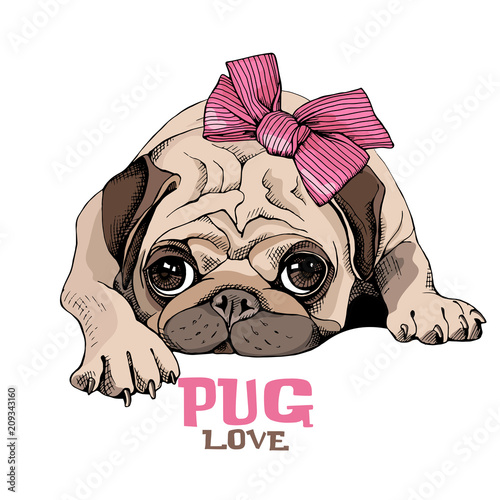 Canvas Print Pug Puppy with a pink bow. Vector illustration.