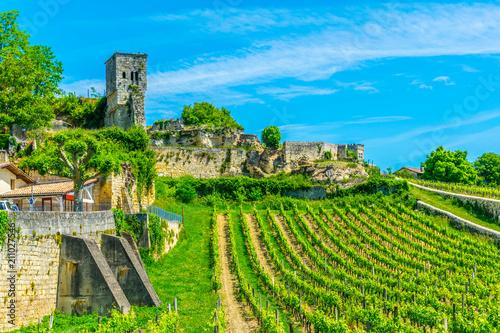 Fotografie, Tablou Vineyards at Saint Emilion, France