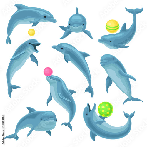 Foto Cute blue dolphins set, dolphin jumping and performings tricks with ball for ent