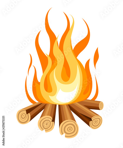 Cuadros en Lienzo Burning bonfire with wood
