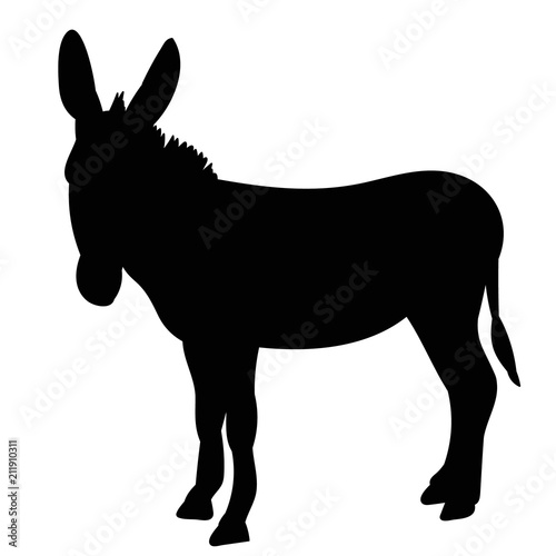 Carta da parati vector, isolated black silhouette of a donkey, it is worth