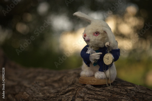 Photo Alice in Wonderland