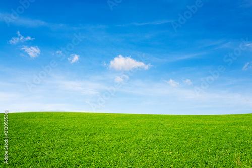 Carta da parati Green meadow under blue sky