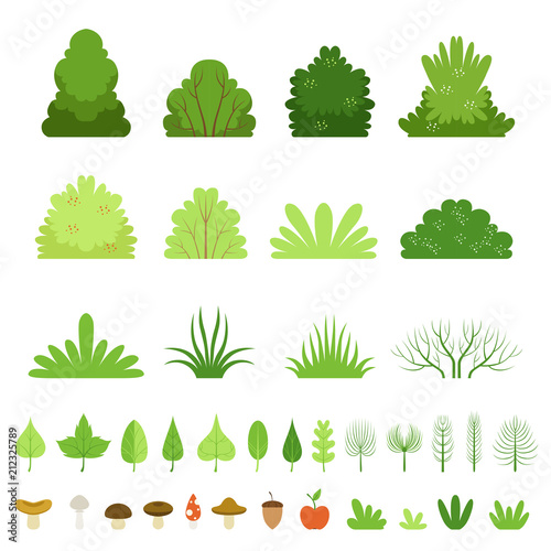 Photographie Set of different forest bushes, grasses, leaves of trees, mushrooms and fruits