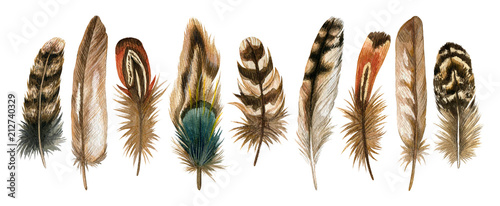 Fotografie, Tablou Watercolor hand drawn isolated set of brown feathers