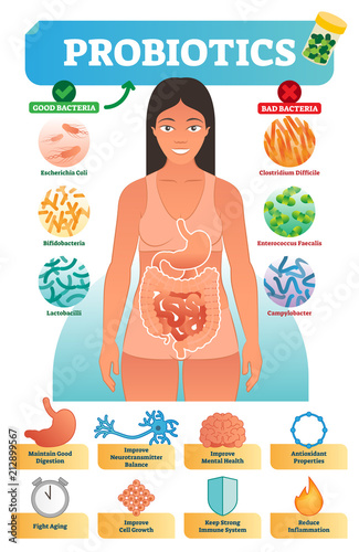 Wallpaper Mural Vector illustration with probiotics