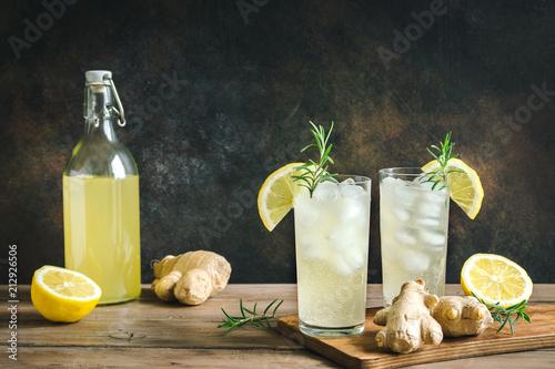 Ginger Ale or Kombucha