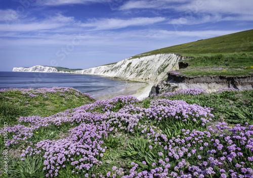 Obraz na płótnie Compton Isle of Wight