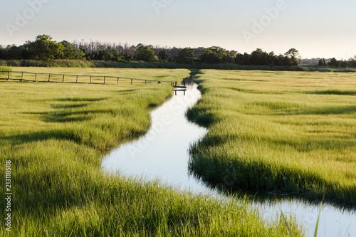 Canvas Print creek through marsh field