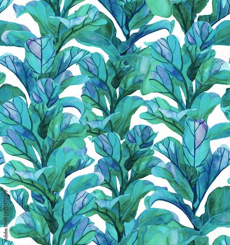 Fototapeta Tropikalny wzór z sukulentów, tropikalny liści Tł