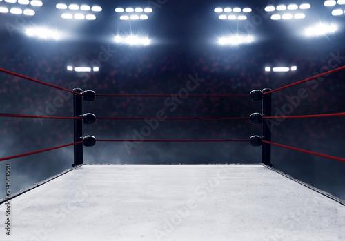 Wallpaper Mural Professional boxing ring
