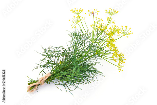 Leinwand Poster Fresh dill with yellow flowers, isolated on white background.