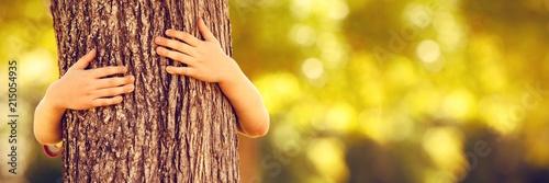 Fotografiet Little boy in the park hugging tree