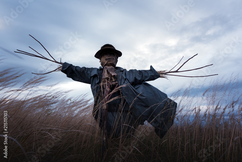 Fotografia Scary scarecrow in a hat on a cornfield in cloudy weather