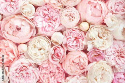 Fototapeta premium Lato kwitnie delikatną różę na kwitnących kwiatach świątecznego tła, pastelu i miękkiego bukieta kwiecistej karcie