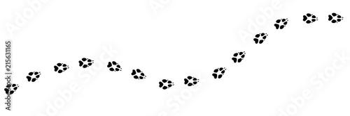 Fototapeta premium Ślad wilka. Tory ukośne zwierząt z sylwetką wilka na koszulki, tła, wzory, strony internetowe, projekty gablot, kartki z życzeniami, odciski dzieci itp. To pędzel rozpraszający.