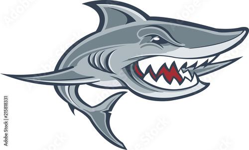 Fototapeta premium Wielki biały rekin