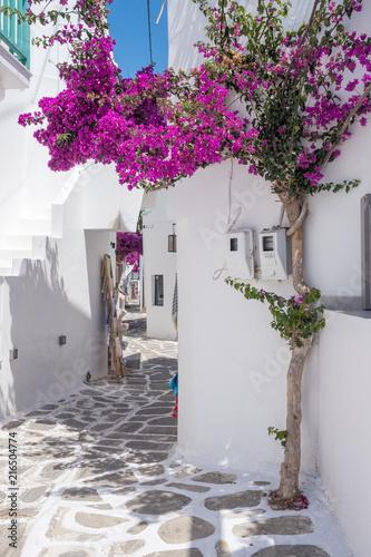 Fototapeta premium Widok na typową wąską uliczkę na starym mieście Naoussa, wyspa Paros, Cyklady, Grecja