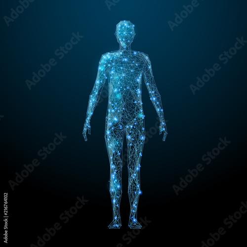 Human body low poly wireframe Fotobehang
