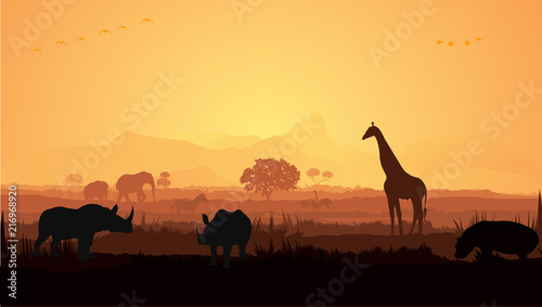 Obraz na plátně Wild animals silhouette