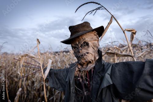 Obraz na płótnie Scary scarecrow in hat in cornfield