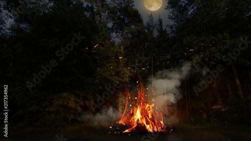 Fotografija Night forest, a fire is burning, a big moon