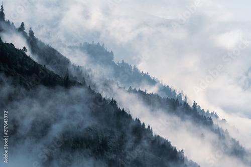 Fototapeta premium Zalesione zbocze górskie w niskiej leżącej mgle w dolinie z sylwetkami wiecznie zielonych drzew iglastych owianych mgłą.