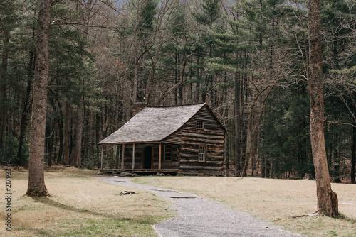 cabin in the woods Fototapeta