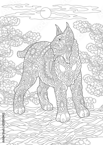 Fototapeta premium Coloring Page. Coloring Book. Colouring picture with wildcat.