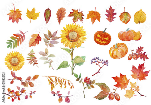 Watercolor illustration of yellow and red autumn leaves