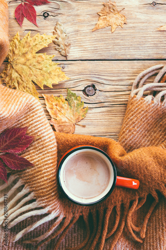 cocoa, red mug, plaid and fallen leaf, autumn mood, cozy, hot chocolate