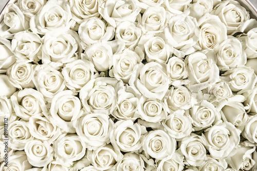 Fototapeta premium Wiele białych róż to widok z góry. Zabytkowy styl.