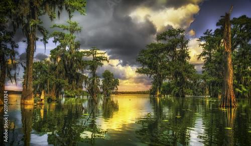 Fotografie, Obraz Bayou de Lafayette
