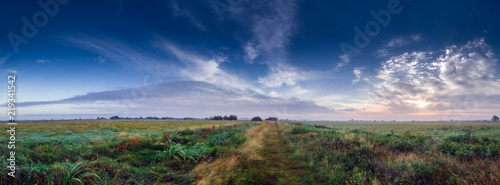 Fotografie, Obraz Midsummer meadow country road at sunrise in the Teufelsmoor, a marshland near th