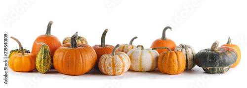 Many Pumpkins on white background
