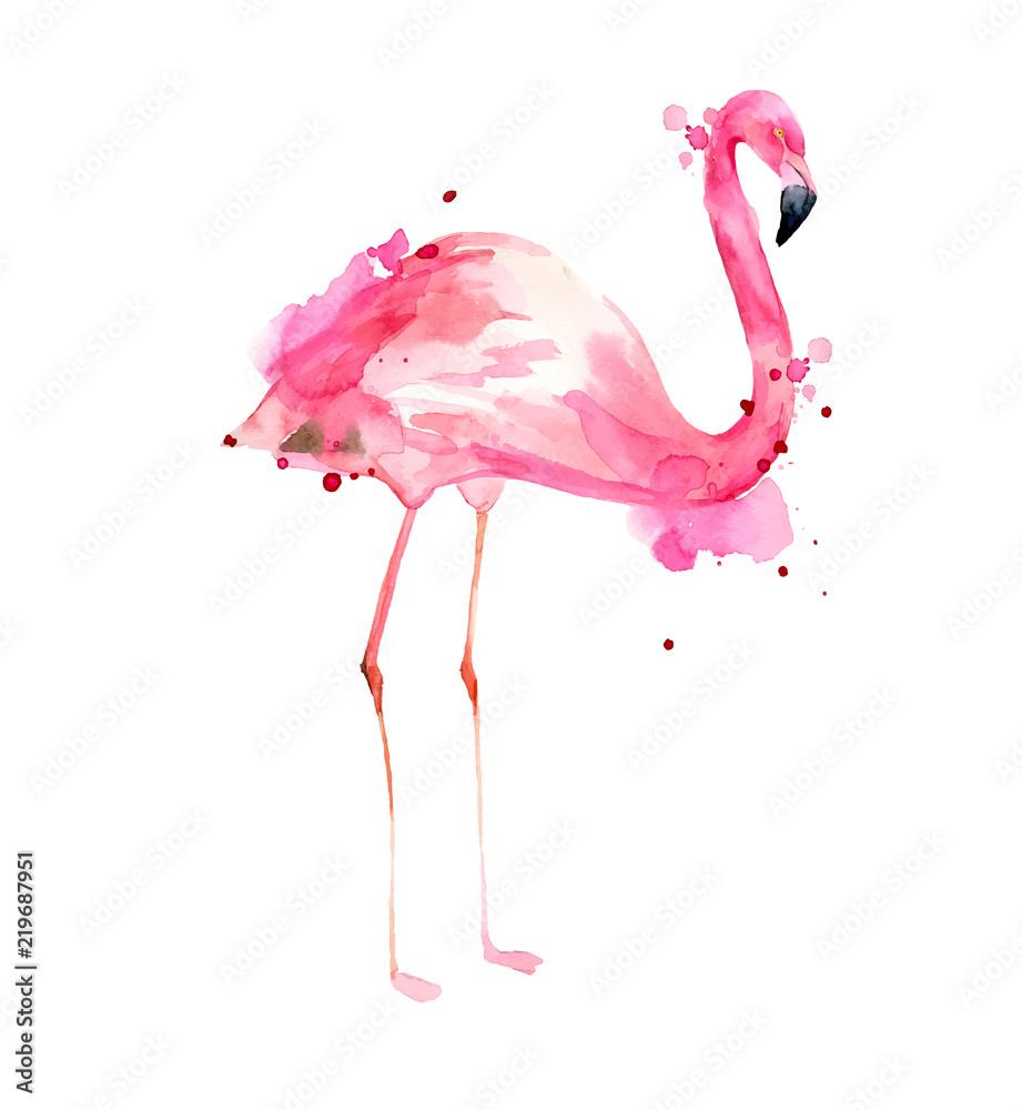 Akwarela ręka ilustracja różowy flamingo. Tropikalny egzotyczny ptak róży flaming z akwareli pluśnięciami na białym tle. Drukuj do pakowania, tapet, kart, tkanin. <span>plik: #219687951 | autor: Arttabula</span>