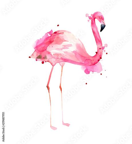 Fototapeta premium Akwarele ręcznie rysowane ilustracja różowy flaming. Tropikalny egzotyczny ptak Róża Flaming z akwarela plamy na białym tle. Druk do pakowania, tapet, kart, tekstyliów.