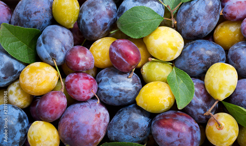 colorful plums with leaves, top view