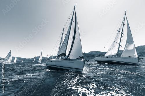 Fototapeta Sailing regatta through the waves in the Sea. In cool colors.