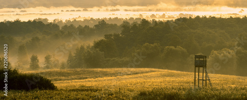 Fotografie, Obraz hunting tower in the valley in the morning mists