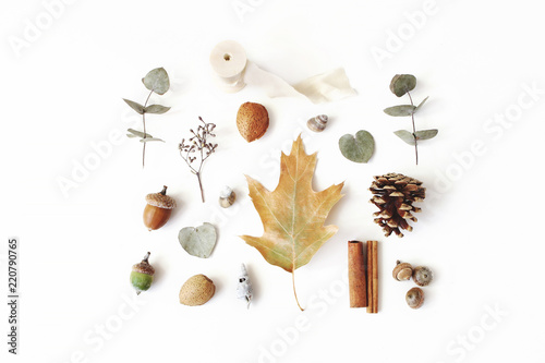 Autumn styled botanical arrangement. Composition of acorns, pine cones, dried eucalyptus and oak tree leaves and cinnamon sticks on white table background. Fall minimal concept, flat lay, top view.