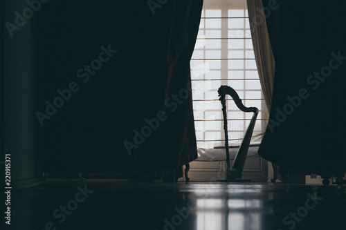 Canvas Print The silhouette of a harp in a salon in front of a door with white curtains creat