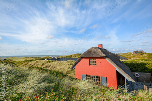 Dune landscape at the North Sea with holiday homes near Henne Strand, Jutland De Fototapete