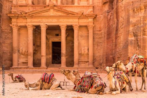 Camels resting near the ancient temple in Petra, Jordan