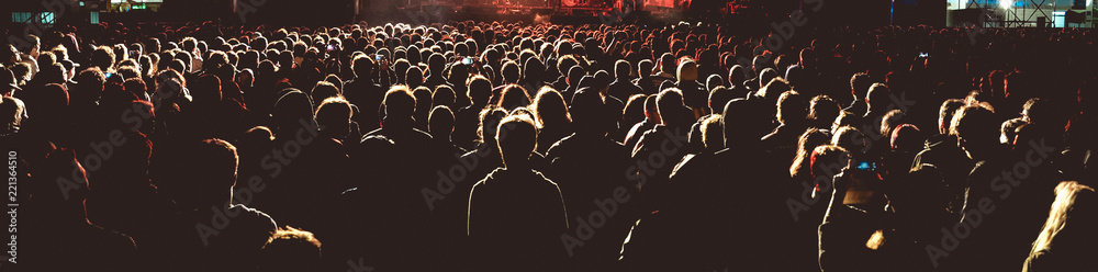 Panoramic view of the crowd in a concert