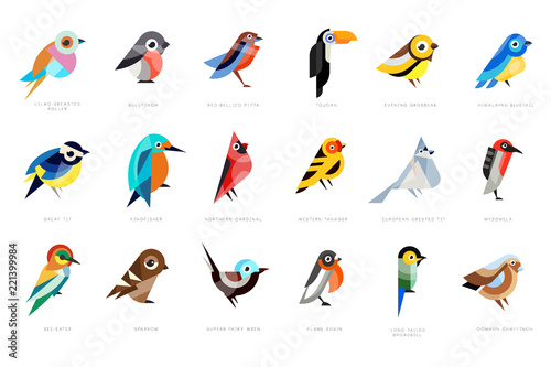 Fototapeta Collection of birds, lilac breasted roller, bullfinch, red bellied pitta, great