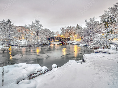 Stampa su Tela Central Park, New York City